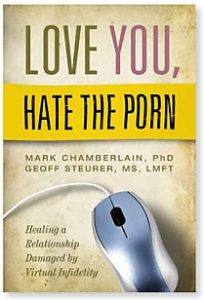 Love_You_Hate_the_Porn